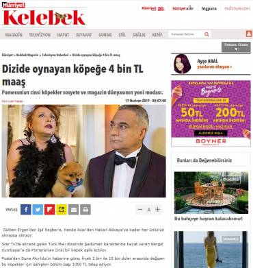 Hürriyet Kelebek – Dog Star of the TV show earns 4 thousand TRY